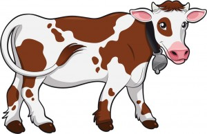 Cow colored drawing.