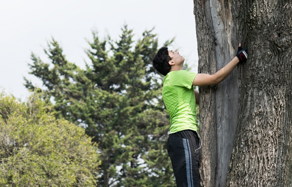 Increase your cognitive functioning by climbing a tree