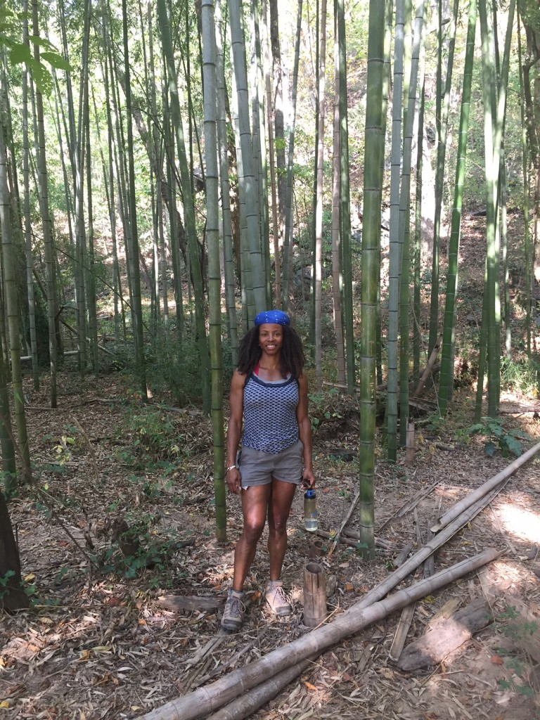 Hiking as a small business owner