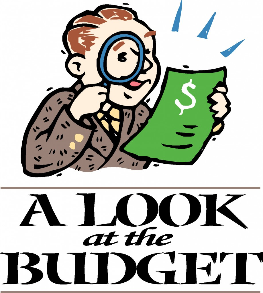 Accounting department manager reviewing the annual budget